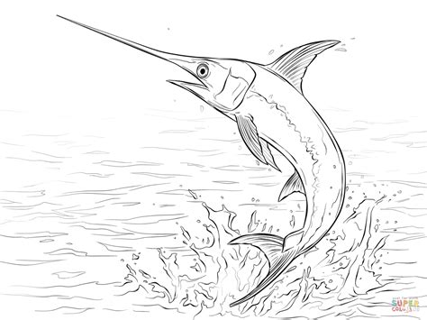 marlin fish coloring pages swordfish jumping out of water coloring page free