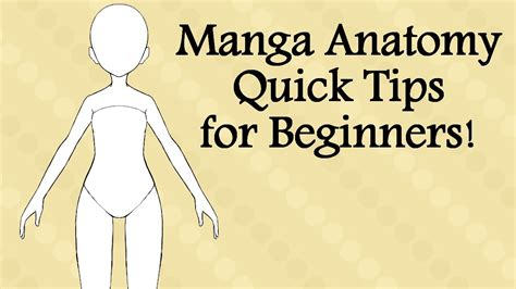 4 quick tips to find manga anatomy quick tips for beginners youtube