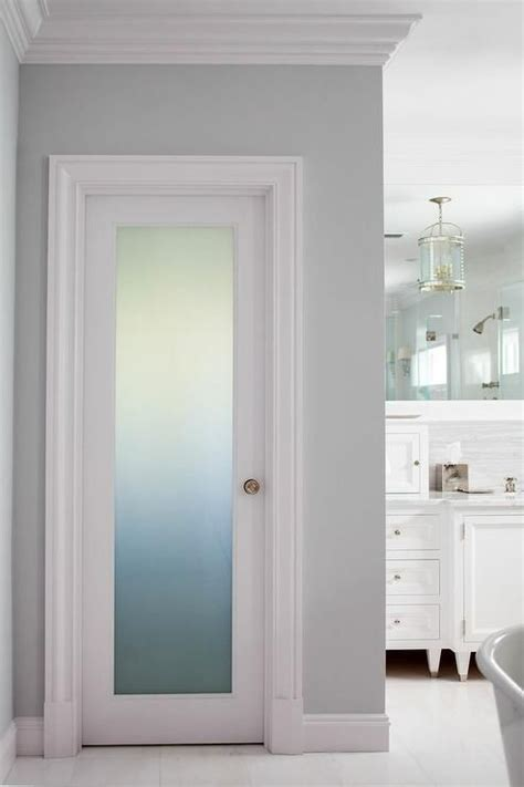 bathroom closet door ideas fantastic bathroom boasts a frosted glass water closet