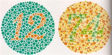 test daltonismo bambini daltonismo cause diagnosi e possibili cure per il