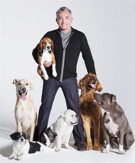 cesar millan puppy chapter 3 how to be a whisperer cesar millan the of doing