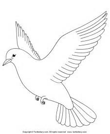 dove coloring page free coloring pages of two turtle doves