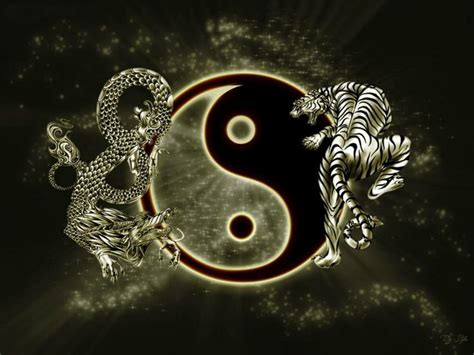 Po Ying Diare Po Yin yin yang i wushu kung fu wuxia yin yang