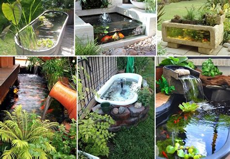 backyard aquarium over 21 beauteous backyard aquarium ideas