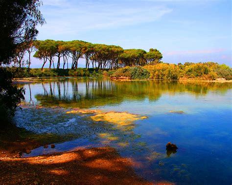 imagenes de paisajes otoño invierno fonditos pantano paisajes otros