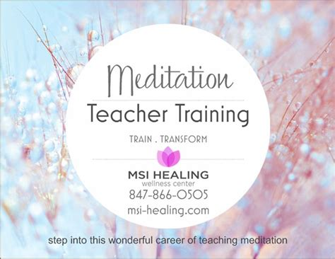 Ionic Foot Detox Chicago by Meditation Certification Chicago Meditation