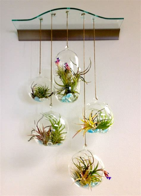 decorate your home with terrariums recycled things