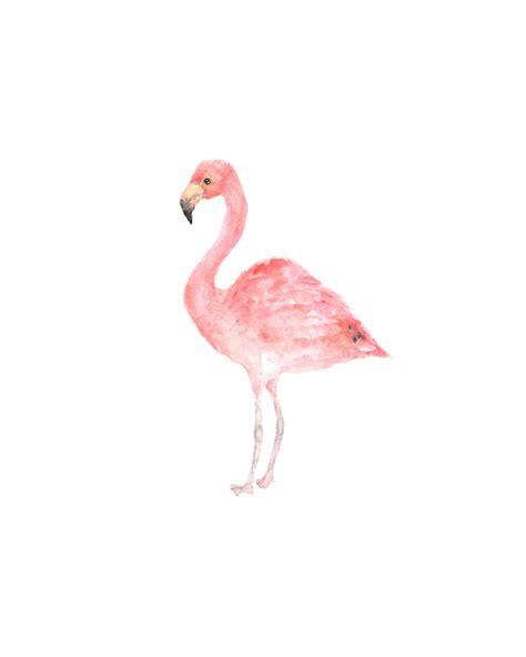 flamingo wallpaper etsy watercolor bird bird painting watercolor painting bird art