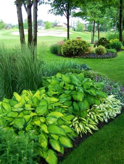 Landscape Ideas With Hostas Hostas Garden Hosta Garden Ideas