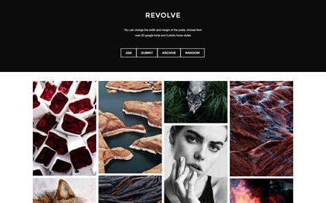 zen theme layout revolve imagery focused for the modernist zen themes