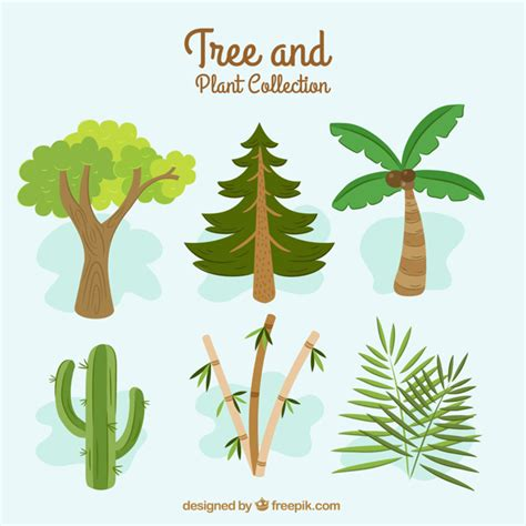 different types of great collection with different types of trees vector