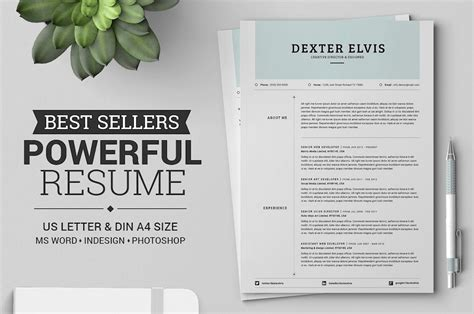 Best Resume Template by 50 Best Resume Templates For Word That Look Like Photoshop