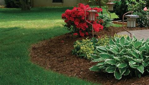 landscape gardening experts home and garden service low maintenance front yard landscaping fine gardening