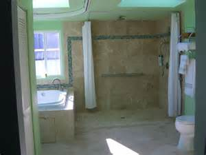 accessible shower doors 7 reasons to choose a shower curtain a shower door