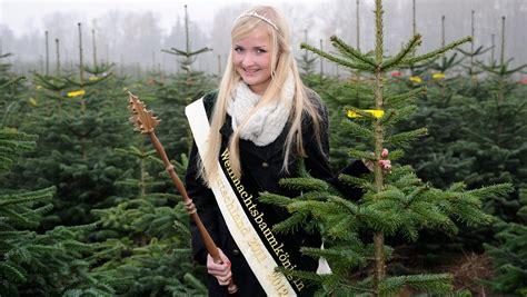 was kostet ein weihnachtsbaum 28 images was kostet