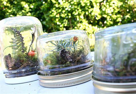 diy  amazing homemade terrariums   perfect