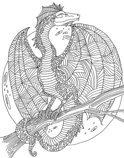 adult colouringdragonslizards snakes