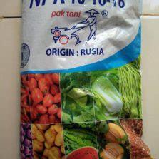 Pupuk Magnesium Sulfat Pak Tani cara menanam cabe hidroponik menggunakan polybag