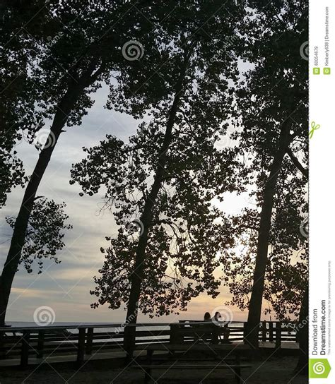 bench couple watch the sunset stock photo image 60054679