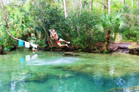 rope swings in florida rope swing picture of homosassa florida tripadvisor