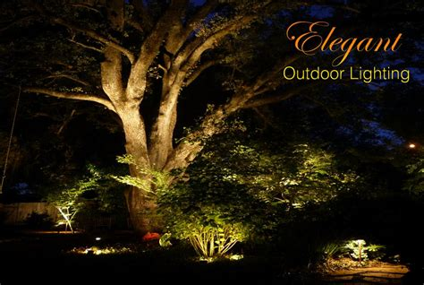 professional landscape lighting landscape lighting design professional install granite bay ca 95746 916 674 2921