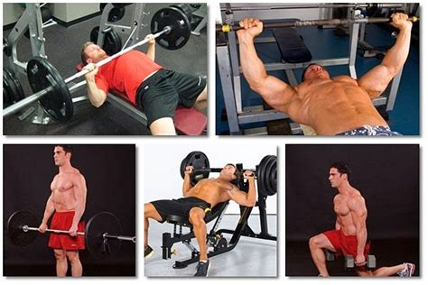 bench press strength workout andy bolton strength reveals to people a bench press