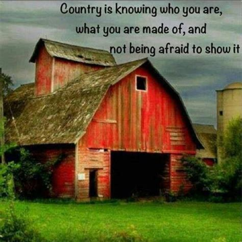 Shed Quote by Barn Quotes Image Quotes At Relatably