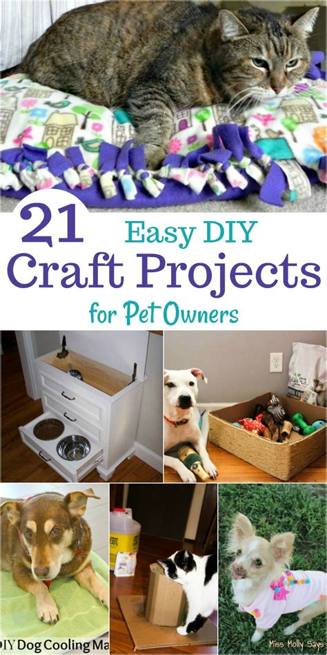 pets archives simple home diy ideas 21 easy diy craft projects for pet owners miss molly says
