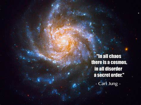 Kaos Nikola Testa in all chaos there is a cosmos carl jung creative by