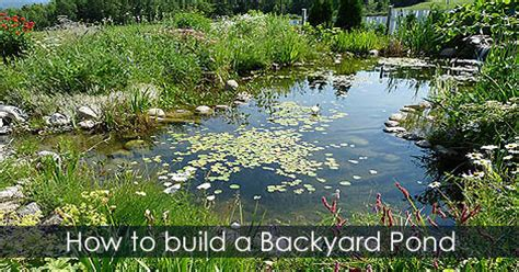 how to make a pond in your backyard water gardening idea ponds network in your backyard