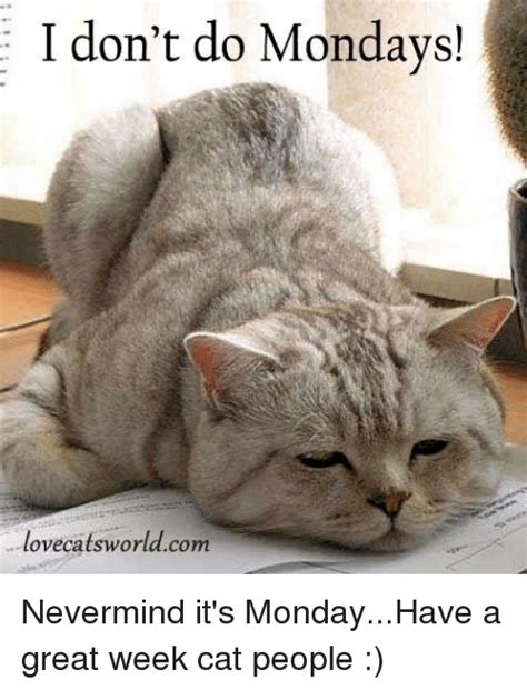 Don T Do It Meme - i don t do mondays lovecatsworldcom nevermind it s