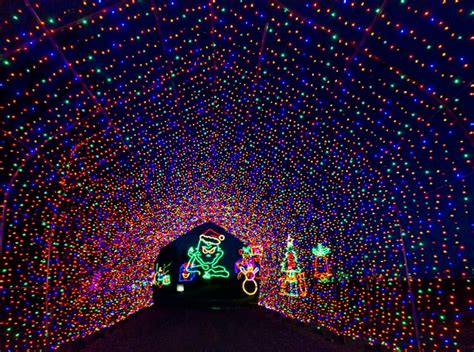 Shady Brook Farm Light Show by Start Your Week Right Sunday Lawlor