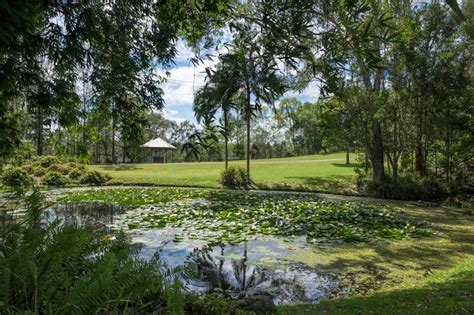 Kholo Botanical Gardens What To Do In Ipswich This Weekend