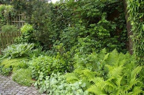 garten pur de schattengarten garten