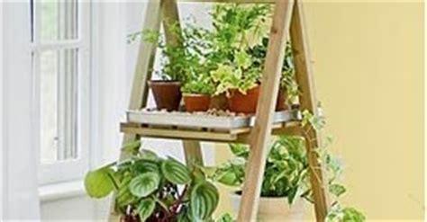 Pot Plastik Untuk Anggrek model rak untuk tanaman hias tips dan inspirasi