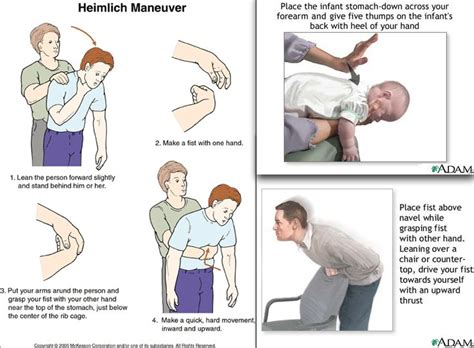 heimlich maneuver for dogs heimlich maneuver chart baby stuff