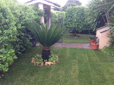 esempi di giardini esempi lavori hobby flora