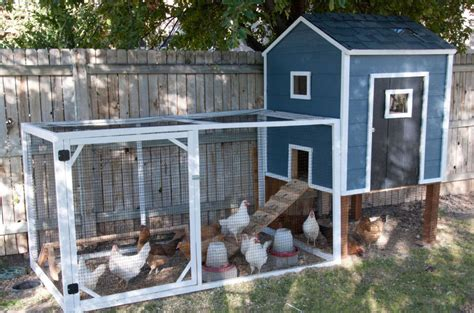 backyard coops 15 diy chicken coops you need in your backyard usa