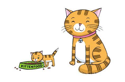 Odong Odong Dongeng Kucing Anjing kenapa kucing dan anjing suka dielus bobo id