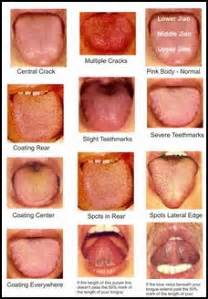 tongue color chart tongue diagnosis chart car interior design