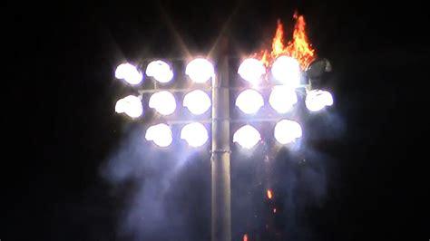 football lights football stadium lights set bird nest on