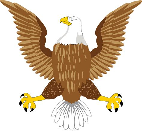 The Bald Eagle American Symbols bald eagle national 183 free vector graphic on pixabay