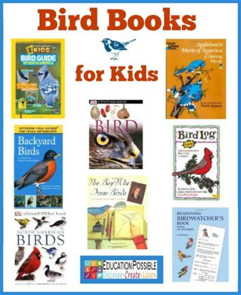 bird picture books 10 bird learning activities for