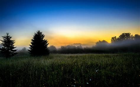 early morning wallpaper 7418 2560 x 1600 wallpaperlayer com