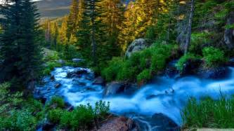 beautiful nature images beautiful nature nature picture
