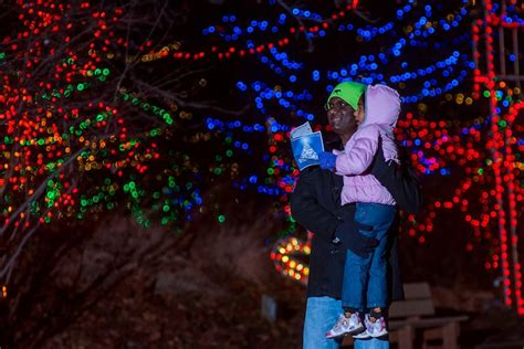 indy zoo christmas lights best places to go ice skating in indianapolis indy s