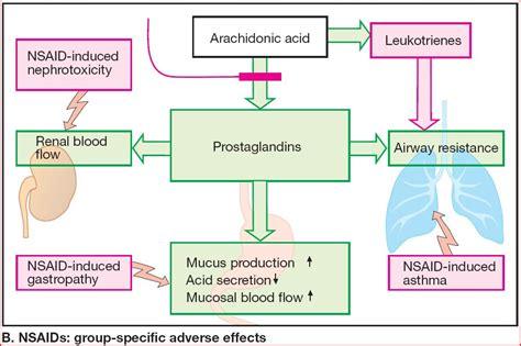Obat Celebrex obat antiinflamasi non steroid hatanta s