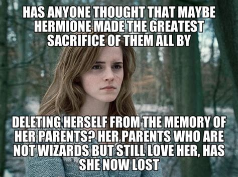 Hermione Meme - well done hermione