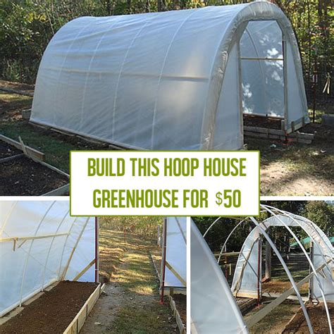 side of house greenhouse how to build a hoop house greenhouse for 50 off grid world