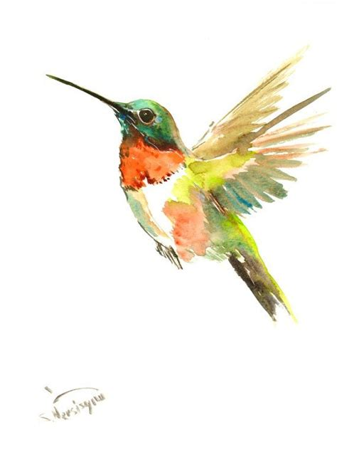 tutorial watercolor hummingbird 82 best images about hummingbird on pinterest watercolor